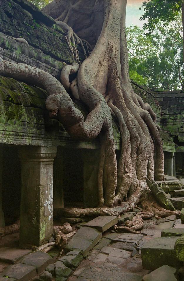 CAM Angkor Wat 039