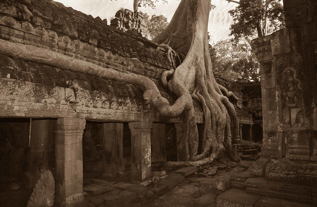CAM Angkor Wat 040