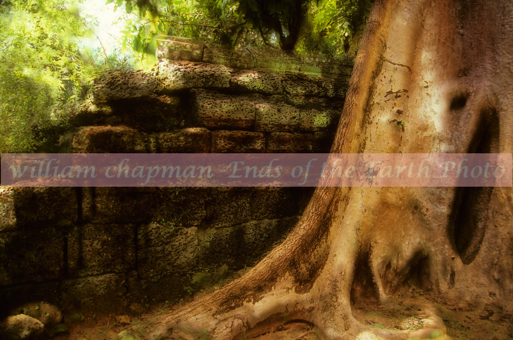 Montage of scene in Ta Prohm-
