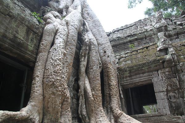 Cambodia- Ta Phrom, Prasat Kravan