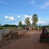 Meg Mr Hong Phnom Kulen National Park 4x4 Quad Bikes Siem Reap Cambodia October 2015