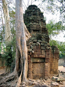 Serenity at Angkor Thom