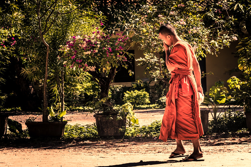 Young monk on the way to lunch