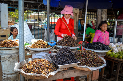 Insect snacks for sale
