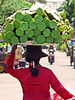 Cambodia - Phnom Penh - city - street scenes - lotus seller
