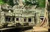 Cambodia - Siem Reap - Angkor - Ta Prohm - rear