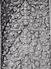 Cambodia - Siem Reap - Angkor - Angkor Wat - stonework - vines