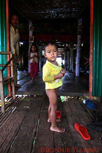 Household living in high stilt houses in Tonle Sap Village