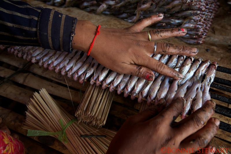 Packing sardines