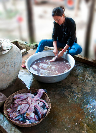 Cleaning fish for drying
