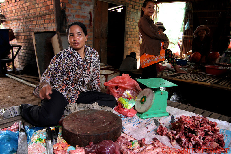 Tonle Sap Village market meat vendor