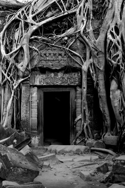 Doorway engulfed in Banyan tree roots at Ta Phrom Temple. As seen in <i>Tomb Raider</i>.