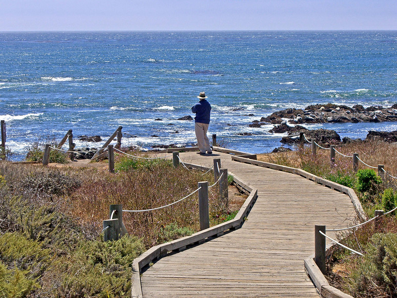 Boardwalk above Moonstone Beach