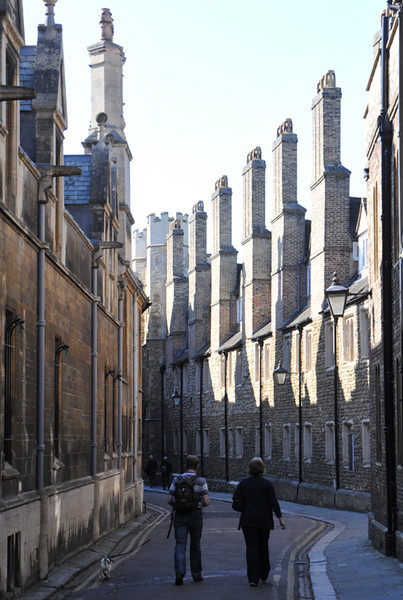 A parade of chimneys in the lane backing on to Caius.