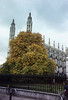 Kings College Chapel, Cambridge, from the Parade  - we would love to have your comments.