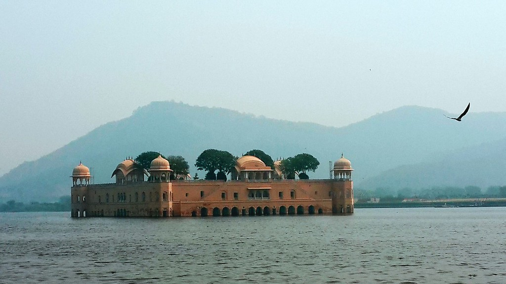 A bird flies towards Jal Mahal, the floating palace in Jaipur.