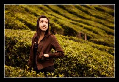 Cameron Highland, Oct 09