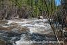 Joe Wright Creek at Aspen Glen Campground in Colorado