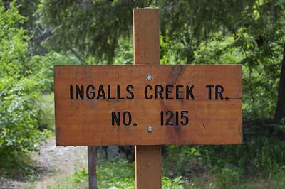 Ingalls Creek 2010-06-20