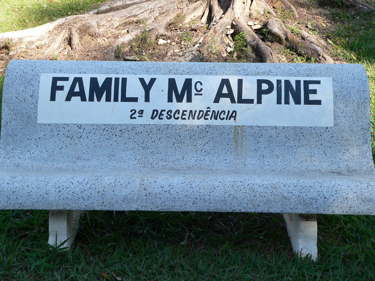 The second generation of the McAlpine family has donated the seating around the playing field.