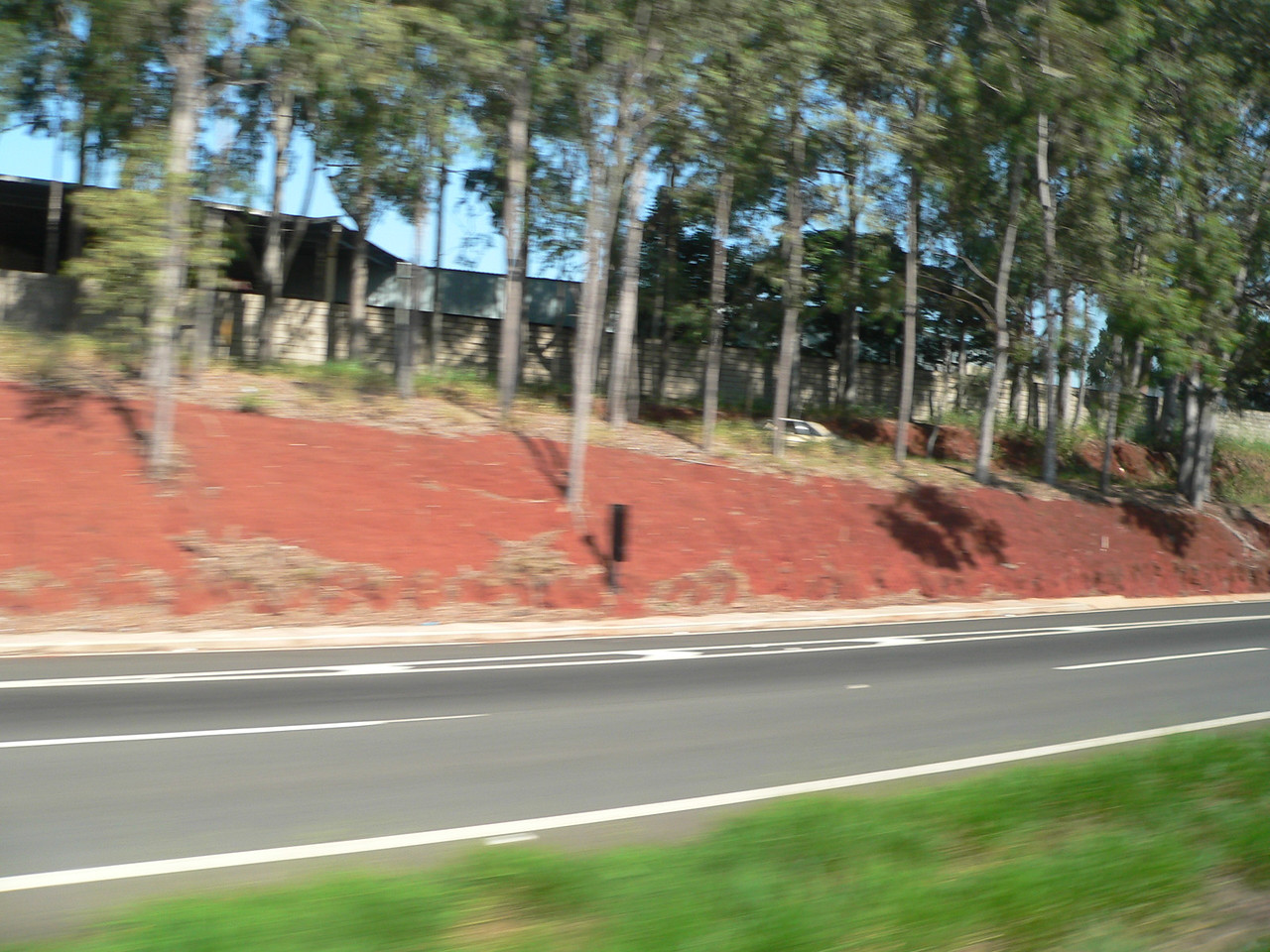 We are passing throught the town of Americana - the red soil reminds me of Georgia.