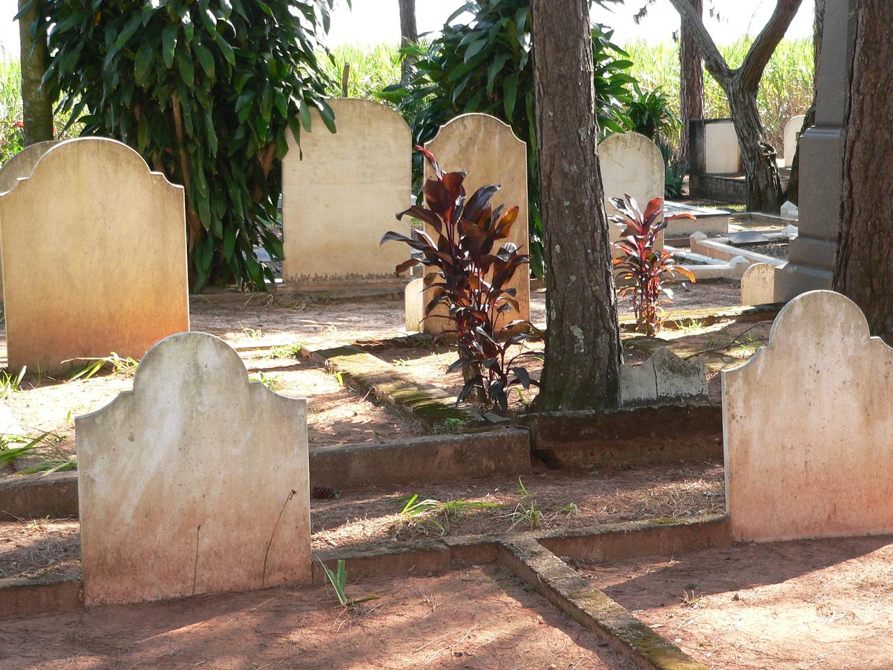 A quiet walk past the numerous headstones.