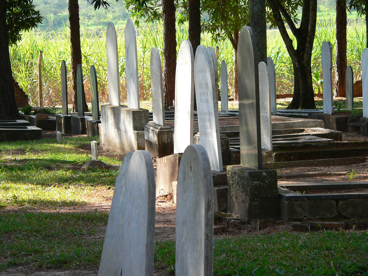 My favorite shot of gravestones in dappled afternoon sunlight.