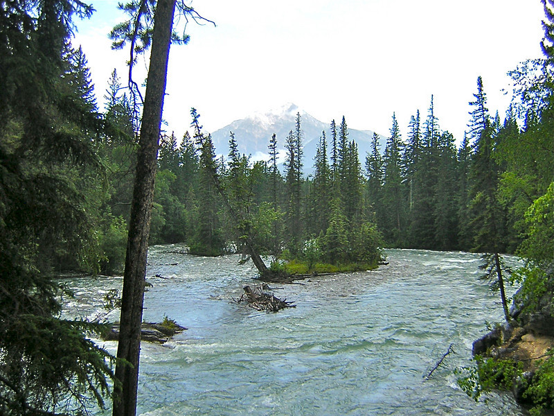 Wells Gray Provincial Park, BC, Canada