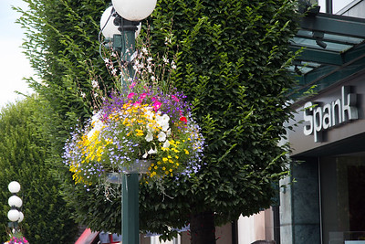Light post flower pots