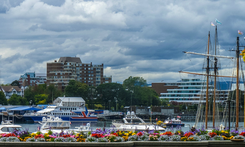 Looking across the harbour to the ferry terminal and US customs building.