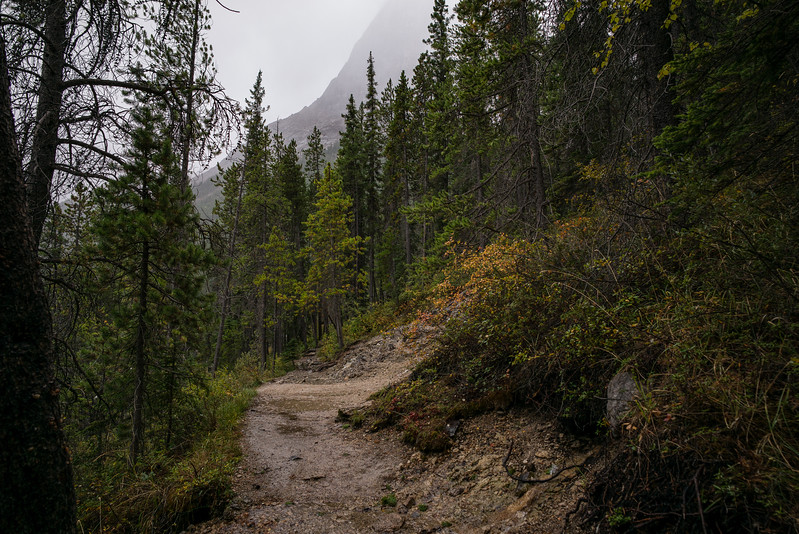 On the trail- Grassi Lakes Hike.