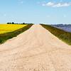 Canola (L) and Flax (R) in Saskatchewan, Canada