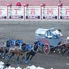 Chuck Wagon Race - Calgary Stampede