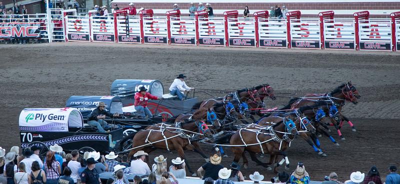 A Wild Event - Chuck Wagon Race - Calgary Stampede