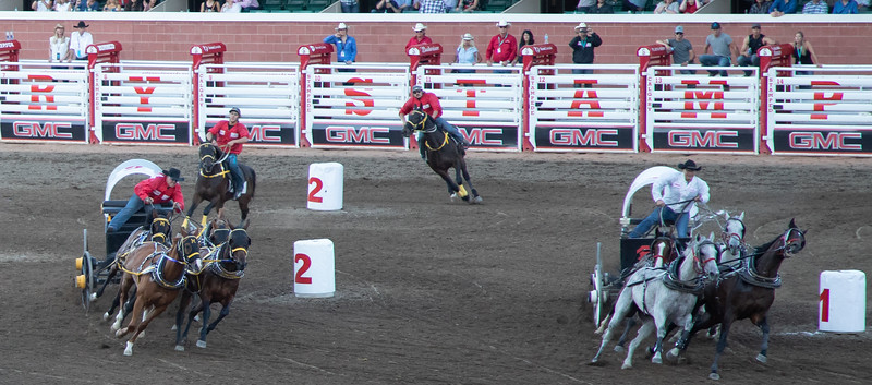 Calgary Stampede - Chuck Wagon Race
