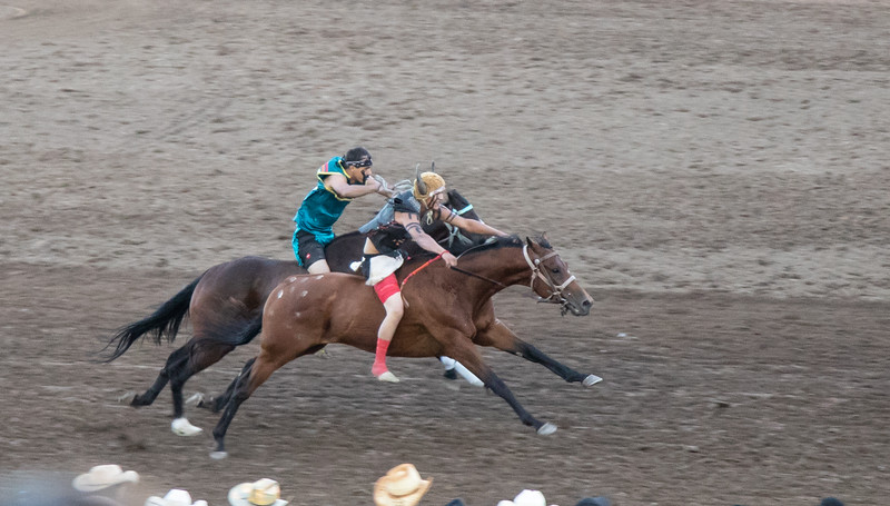 Indian Relay Race at Calgary Stampede - A Crowd Favorite