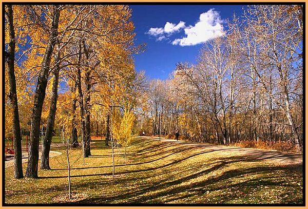 Calgary - Bow River park