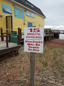 violators will be towed to sea