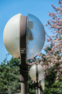 Cool lamps in a park.