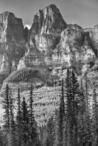 B&W Castle Mountain