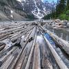 Logs Lake Moraine