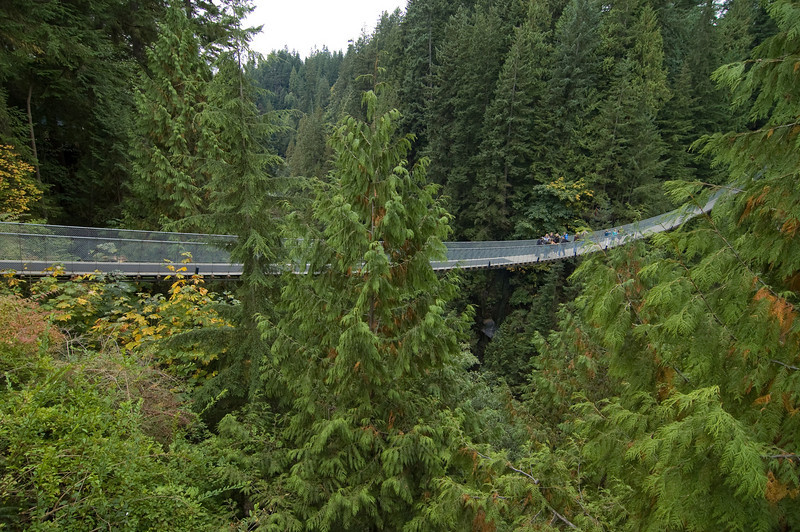 Capilano Suspension Bridge Vancouver