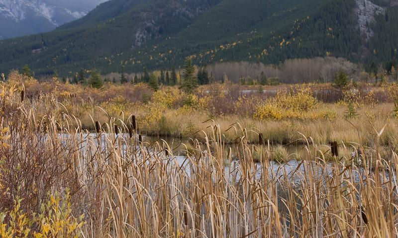 Banff National Park - Rocky Mountains - Vermillion Lakes