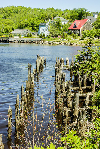 Old pier pilings, Bear River, NS