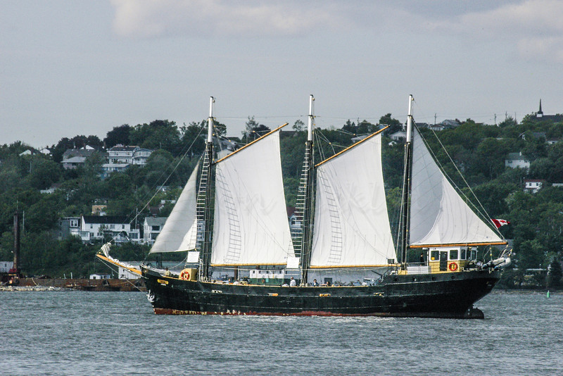 Small schooner out for a sail.