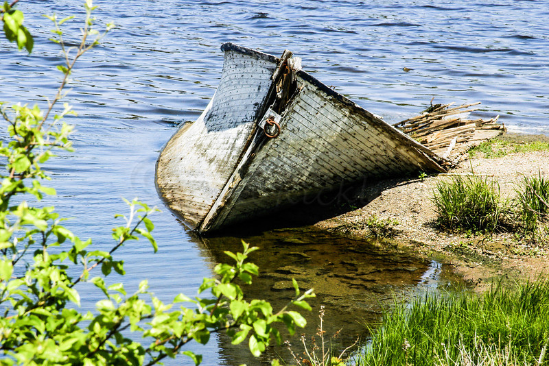 Rotting boat
