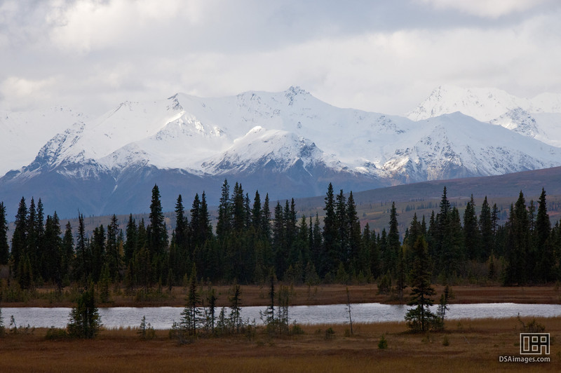 Mountain view in the Denali National Park from the George Parks Highway