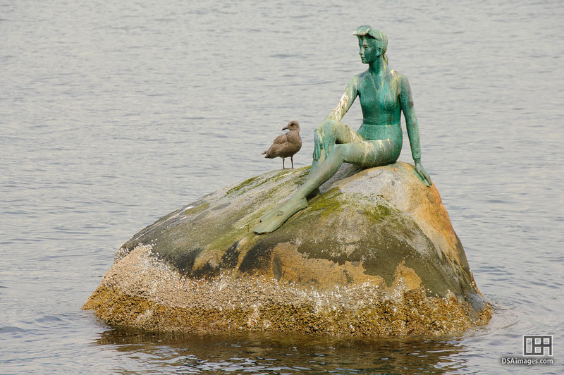 Girl In Wetsuit by Elek Imredy, Stanley Park, Vancouver