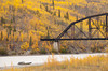 Autumn colours around Nenana