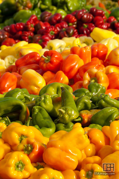 Colourful peppers available at the Fruit Garden store near Okanagan